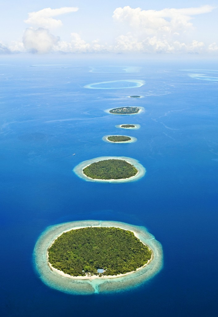 Maldives_nextisland_tropicallife_2