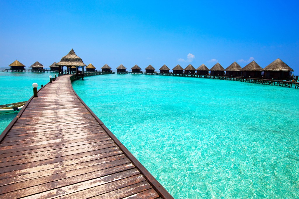 Maldives_tropicallife